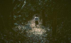森の中の後ろ姿